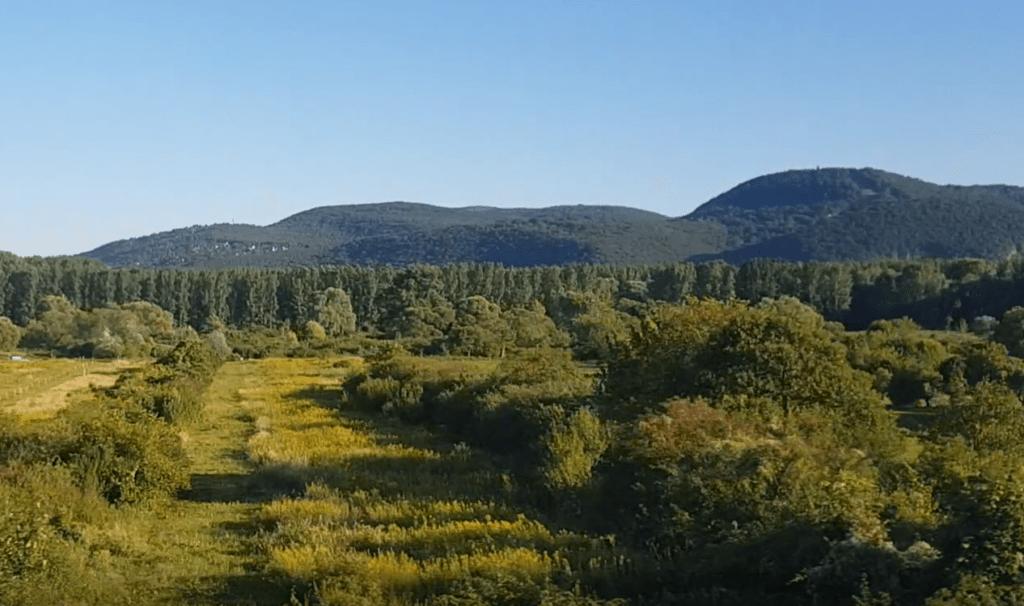 Landschaft zwischen Bratislava und Budapest: Wald und Hühel